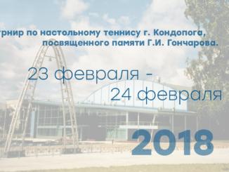 Турнир по настольному теннису г. Кондопога, посвященного памяти Г.И. Гончарова.