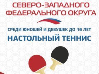 2019 год: Первенство СЗФО кадеты 2004-06г.р.